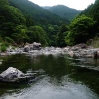 天川鮎釣り情報。
