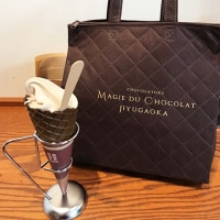 自由が丘マジ・ドゥ・ショコラでチョコレートワッフルにミルクチョコレートのソフトクリームを食べました。