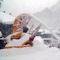 降雪 40センチほど