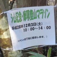 裏六甲お散歩(森林植物園~穂高湖~シェール槍)