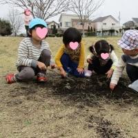 2017年3月23日(木)の【写真館】