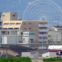 淀川堤防をぶらぶら(大阪市 旭区 千人つか付近)