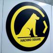 7月12日(水)のつぶやき 東京出張 小川町駅 JR八高線 HACHIKO SQUARE