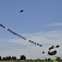 野の花 と 凧揚げ