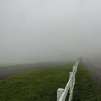 雨の1日、霧の清泉寮