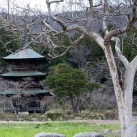 2017.04.20の高畠町 阿久津八幡神社