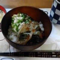 2月21日夕 オクラと芽かぶのやまいも和え&がごめ昆布入り北海道ネバネバ丼