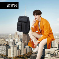 Samsonite RED Taiwan のこれ。