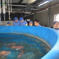 深層水施設の見学1