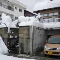 雪!雪!雪!