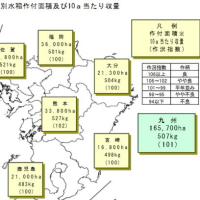 九州7県のコメの作柄, 平年並み