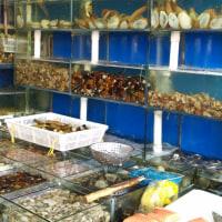 秋はやっぱり上海蟹。初魚市場!