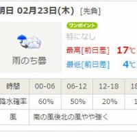 2017 銚子のカモメ・カモ・海鳥観察会記録 ミツユビカモメ 冬羽