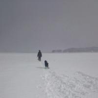 雪のメリット デメリット