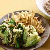 春野菜の天ぷら蕎麦&煮込みハンバーグ