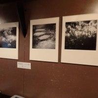 ■女流写真家5人展 F エフ in チャオ (2017年2月3~15日、札幌)