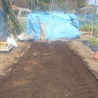 連作軽減肥料を使って畝づくり