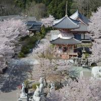 髙取城のお隣壷阪寺