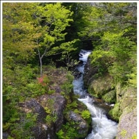 竜頭の滝(上部) (栃木県奥日光)  (1の1)  ★ 2017.06.24 ★