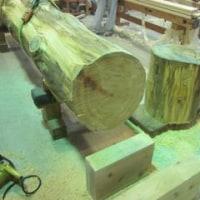 樹齢300年の木、建てました