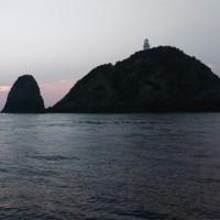 ルアー、石鯛の釣果  10日15日