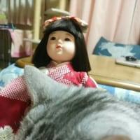 お人形苦手な方ごめんなさいね💦