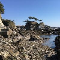 海辺の特権