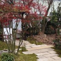 彼岸市の素晴らしい庭園の展示物!