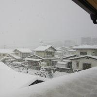 4 2019(H29)年 新年の大雪に遭遇  2階の部屋から