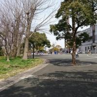 コーフンの大田スタジアム