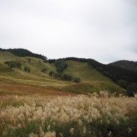 ススキの高原砥峰高原