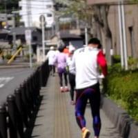 4/23(日)、「河内長野WALK&RUN」総会・定例会!