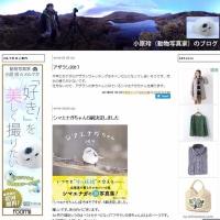小原玲(動物写真家)のブログ