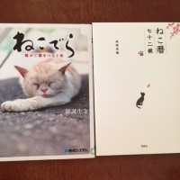 図書館で借りた本 猫ちゃんの本