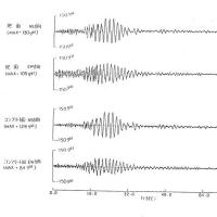 地震応答解析を盲信してはいけない