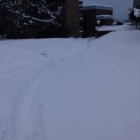 坂道が特に怖いの・・・雪道