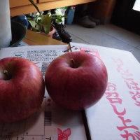 リンゴの思い出