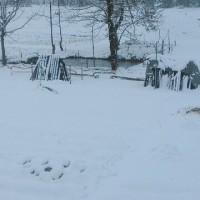 安心してください!小千谷の雪はこんなもんです!