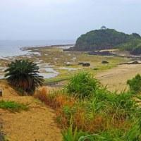 奄美大島の旅ー3