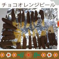 チョコオレンジピール