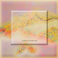 maruka na 紅葉flaming like autumn leaves