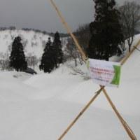 鍋倉山(1,288.8m)