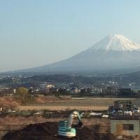 3月京都花見(蕾見)ツアー、Kyoto premature Hanami tour