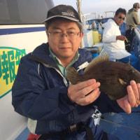 22日カワハギ釣果