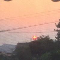 見ました? 真っ赤な太陽
