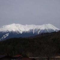 17年4/27~開田高原~花だより