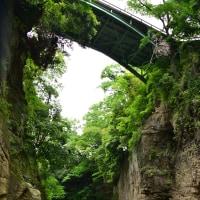 紫陽花と広重の浮世絵の猿橋~大月市④終