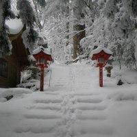 2月11日(土・祝)の様子