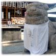 話題の笑う狛犬シリーズ(^^♪通称は「大宮さん」 吹田 「高浜神社」の笑う狛犬