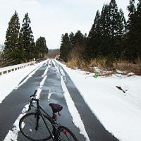 今年最初のサイクリング・・・